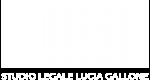 lucia-gallone-avvocato-penalista-novara-03